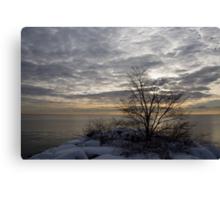 Early Morning Tree Silhouette on Silver Sky Canvas Print