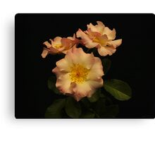 Beauty in Three Canvas Print