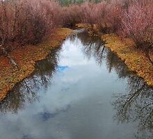Autumn's Reflection by BettyEDuncan