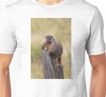 Lookout Tower Unisex T-Shirt