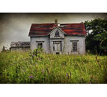 In the Long Grass Photographic Print