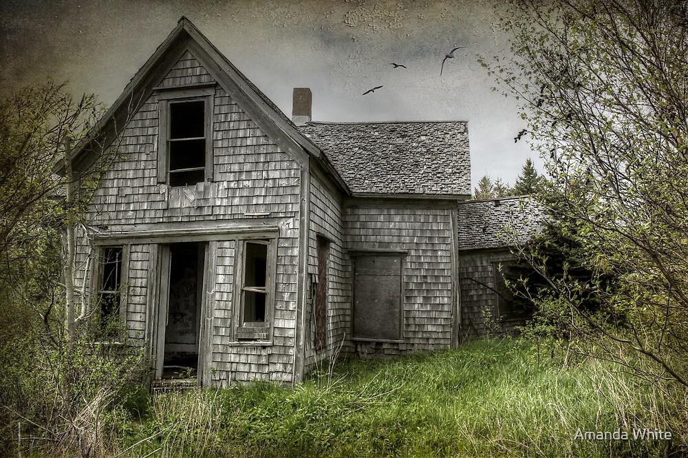 The Animal House by Amanda White