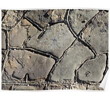 Patterned Rock at the Beach Poster