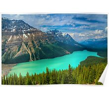 Peyto Lake WideScape Poster