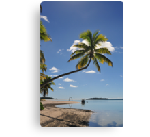 Palm Tree, One Foot Island, Aitutaki Canvas Print