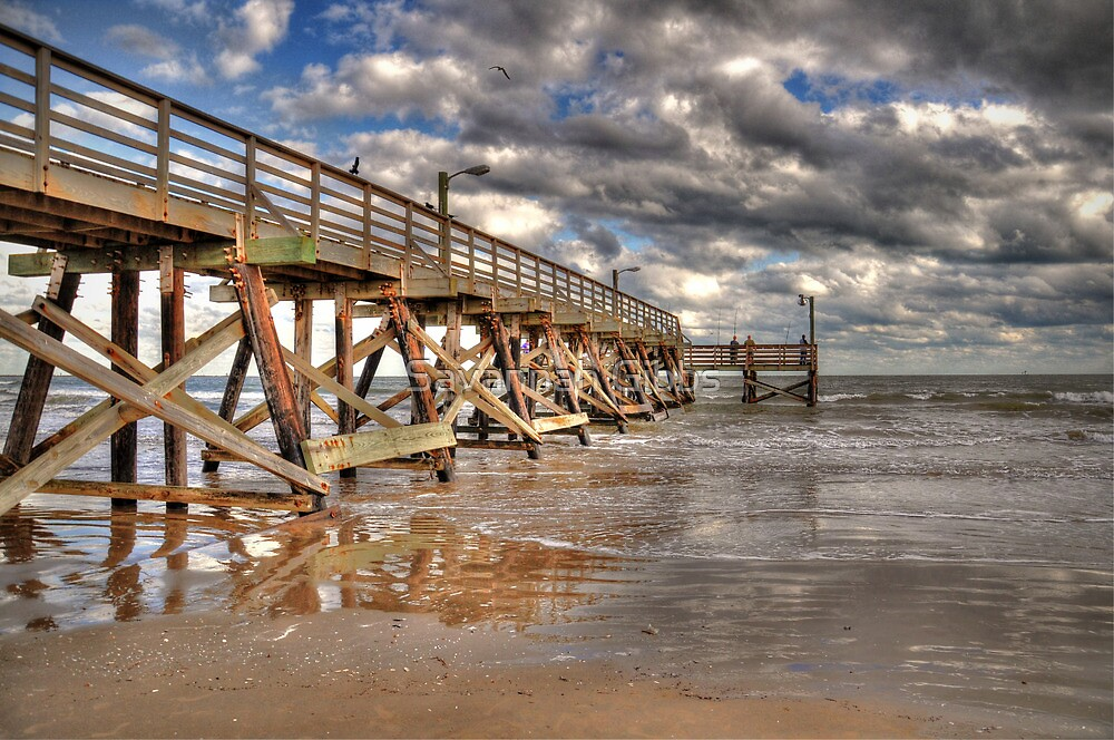 Fishing Pier by Savannah Gibbs