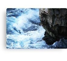 The fight of natural elements Canvas Print