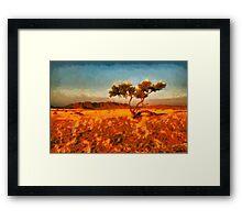 Namibian landscape Framed Print