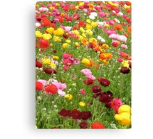 Happy Patch - Floral Rainbow  Canvas Print