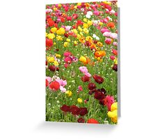 Happy Patch - Floral Rainbow  Greeting Card