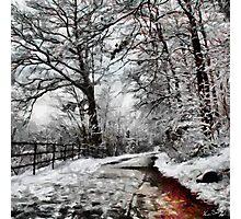 Wintery Road Photographic Print