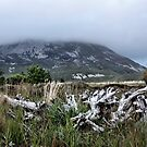 Mount Errigal by Julesrules