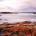 East Coast Tasmania by Imi Koetz