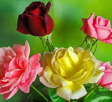 Roses by Janice Carter