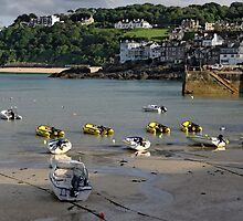 St Ives Harbour, 01 by Rod Johnson