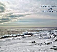 Wintery Coastline by Richard Bean