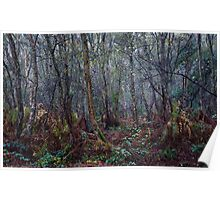 Woodland Maze 1 Poster