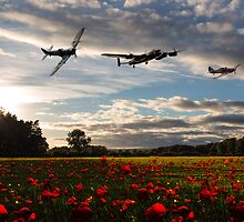 Battle of Britain Poppy Pride by James Biggadike
