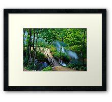 Da Vinci Pond Framed Print
