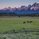 Dawn at Grand Teton National Park by Ryan Wright