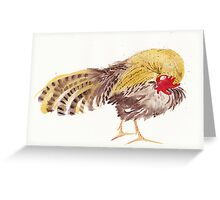Preening Cockerel Greeting Card