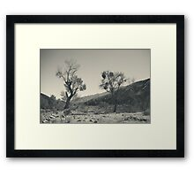 Survival Can Be Tough Framed Print