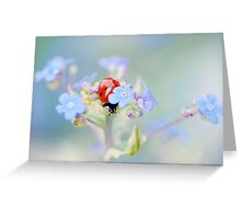 Lady in Hiding Greeting Card