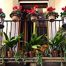 Decorated Balcony by Francis Drake
