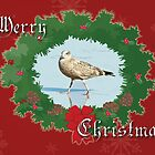 Merry Christmas Greeting Card - Young Seagull by MotherNature