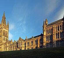 University of Glasgow by Maria Gaellman