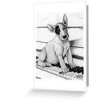 Bull Terrier Puppy Greeting Card