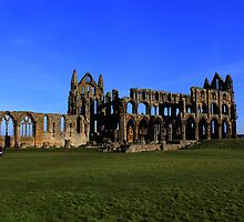 Whitby Abbey by davidwatterson