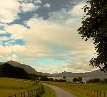 Killarney National Park by Aaron  Fleming