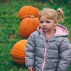 Pumpkin Patch by Jessie Cousins