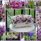 Orchids show by bubblehex08