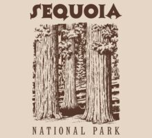 Sequoia National Park by whereables