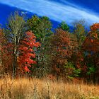 AUTUMN COLOR,CADES COVE by Chuck Wickham