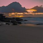 """Tamarama"" Morning by Toni McPherson"