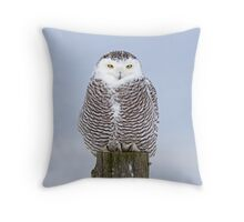 Snowy Owl on post Throw Pillow