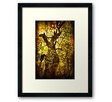 Mythological forest Framed Print