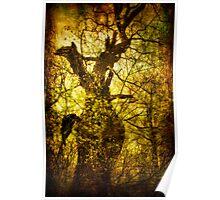 Mythological forest Poster