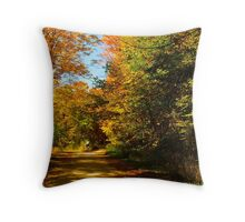 Cycling through colour Throw Pillow