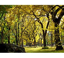 Autumn in New York City  Photographic Print