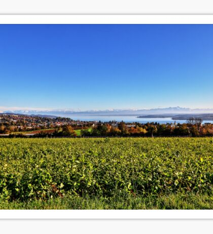 Lake Constance from Aufkirch, Germany Sticker