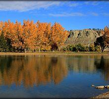 October colours by BevsPhotos