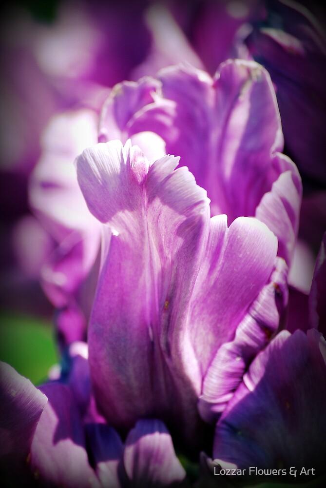 Day of Joy by Lozzar Flowers & Art