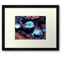 Merlin's Mushroom Framed Print