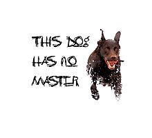 This dog has no master Photographic Print