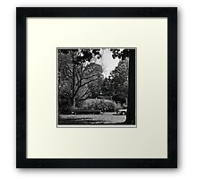 The Mysterious Framed Print