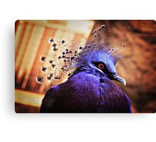 Intense! Canvas Print